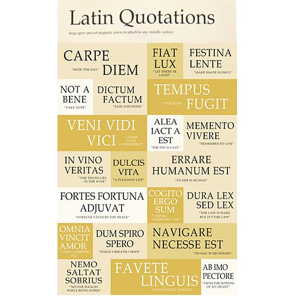 Pin by Leslie Grahn on Authentic Resources: Latin | Latin quotes ...