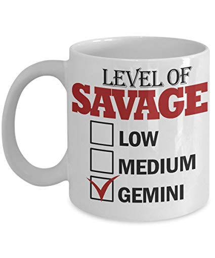 Amazon: Level Of Savage Gemini, 11 oz Ceramic White Coffee ...