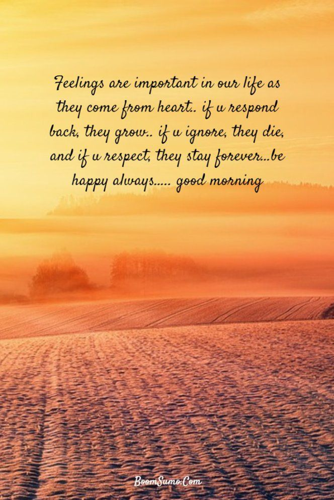 147 Beautiful Good Morning Quotes Sayings About Life 130 ...