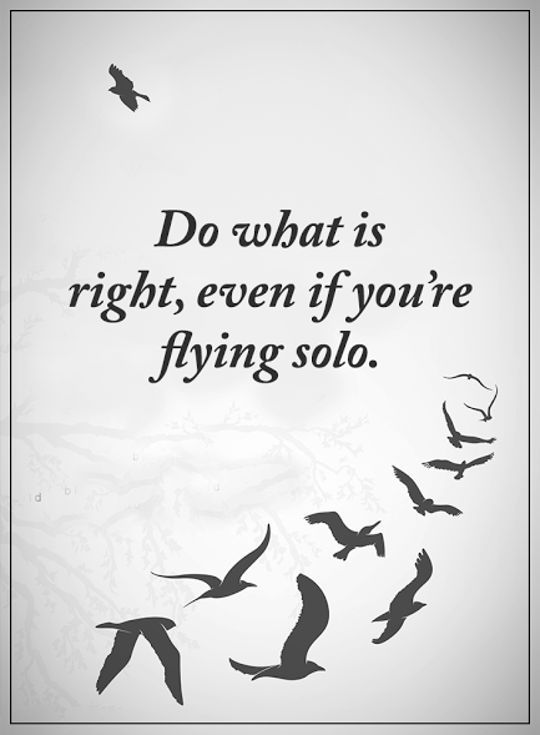 Best Inspirational Quotes: Life Sayings Do What Is Right, Flying ...