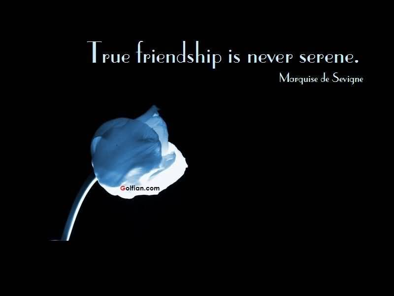 60+ Most Beautiful Short Friendship Quotes – Best Friendship ...