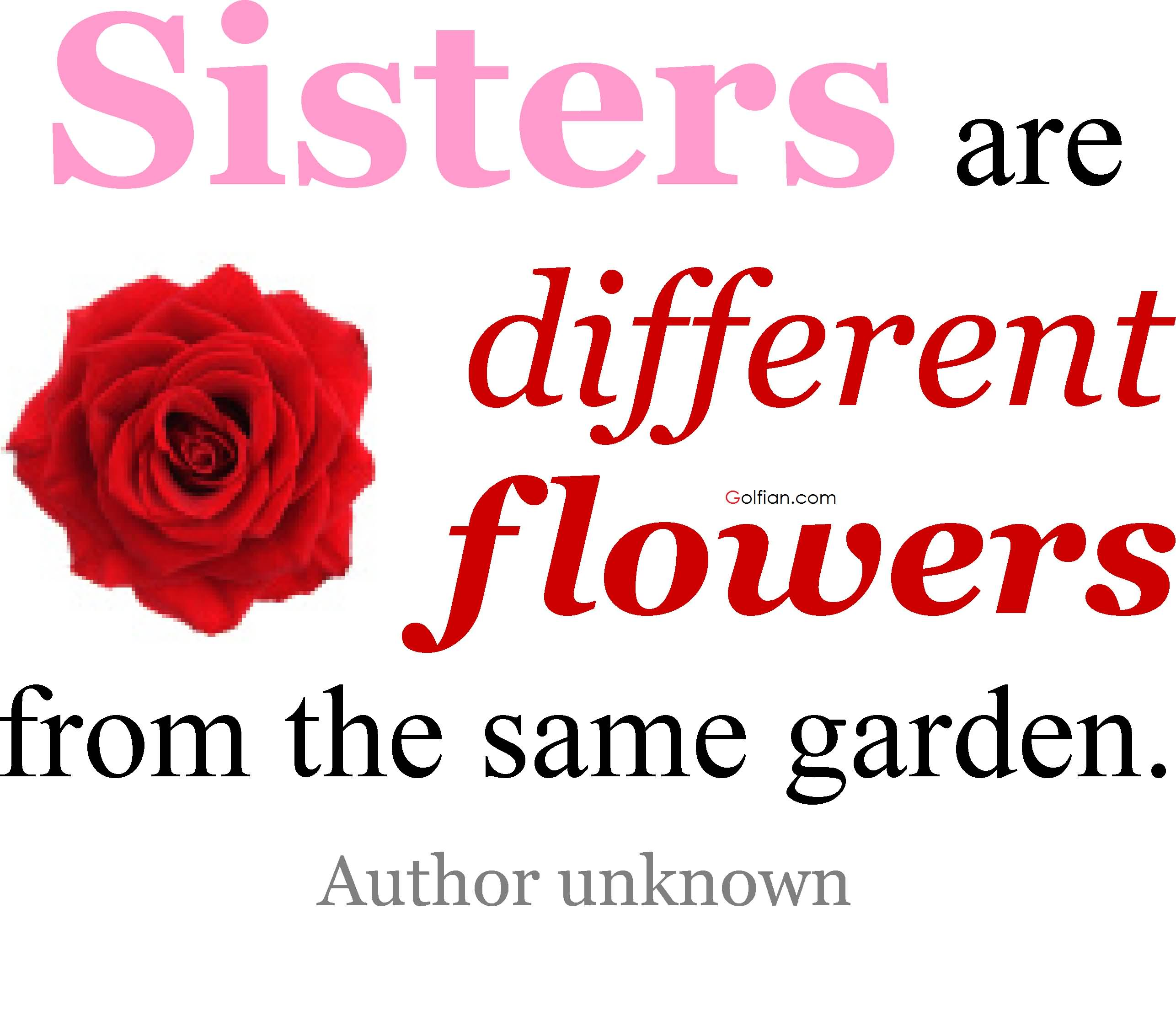 80+ Most Beautiful Sister Quotes – Best Sister Love Sayings Images ...
