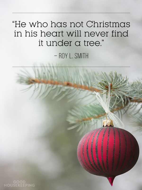 25+ unique Funny merry christmas quotes ideas on Pinterest ...