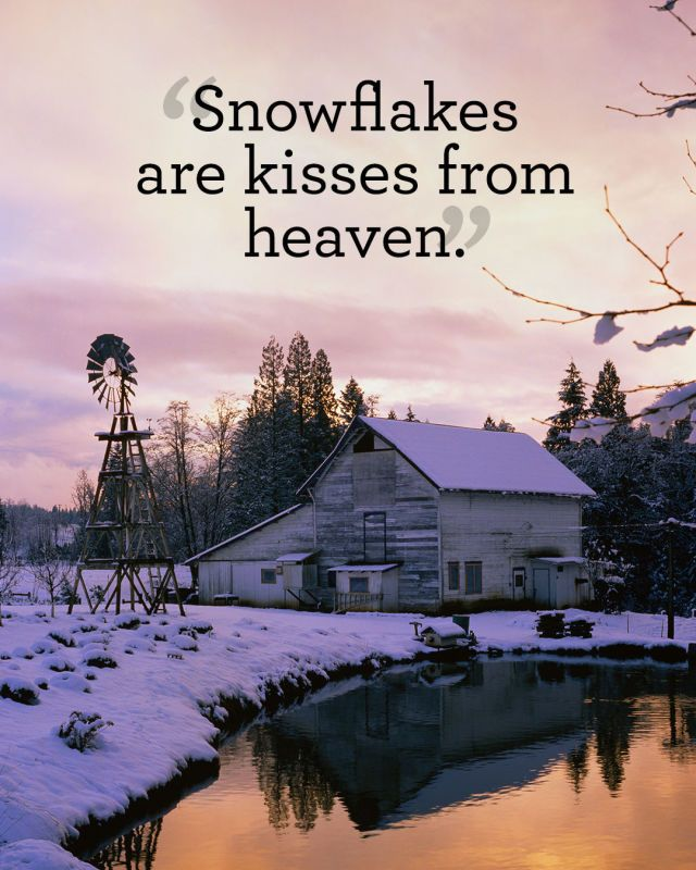Best 25+ Snow quotes ideas on Pinterest | Winter quotes ...